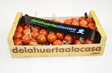 Tomate de Penjar: tomaquet de sucar, tomaca ristra, ecológico, bio, eco sostenible, Premium, gourmet, pa amb tomaquet, tomate de colgar, penjar