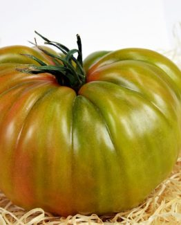 tomates delahuertaalacasa07